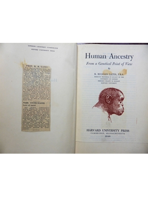 Human Ancestry, From a Genetical Point of View, R Ruggles Gates, Harvard University, First Edition 1948